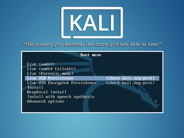 Kali Linux encrypted live USB persistence over multiple