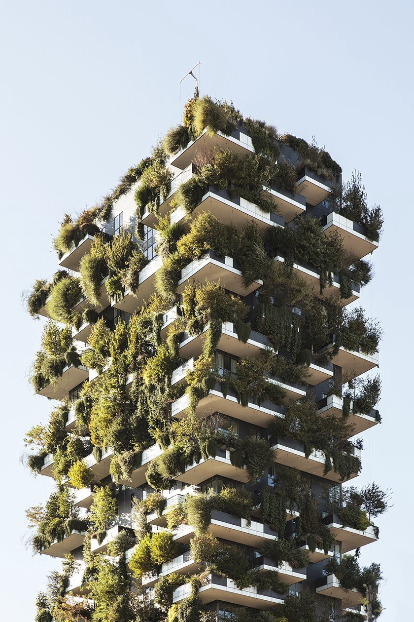 The Bosco Verticale was designed to feature staggered, overhanging balconies, accommodating large tubs of vegetation and allowing for the continued growth of the maturing trees. (Photo: Stefano Boeri Architetti, Evergreen Architecture)