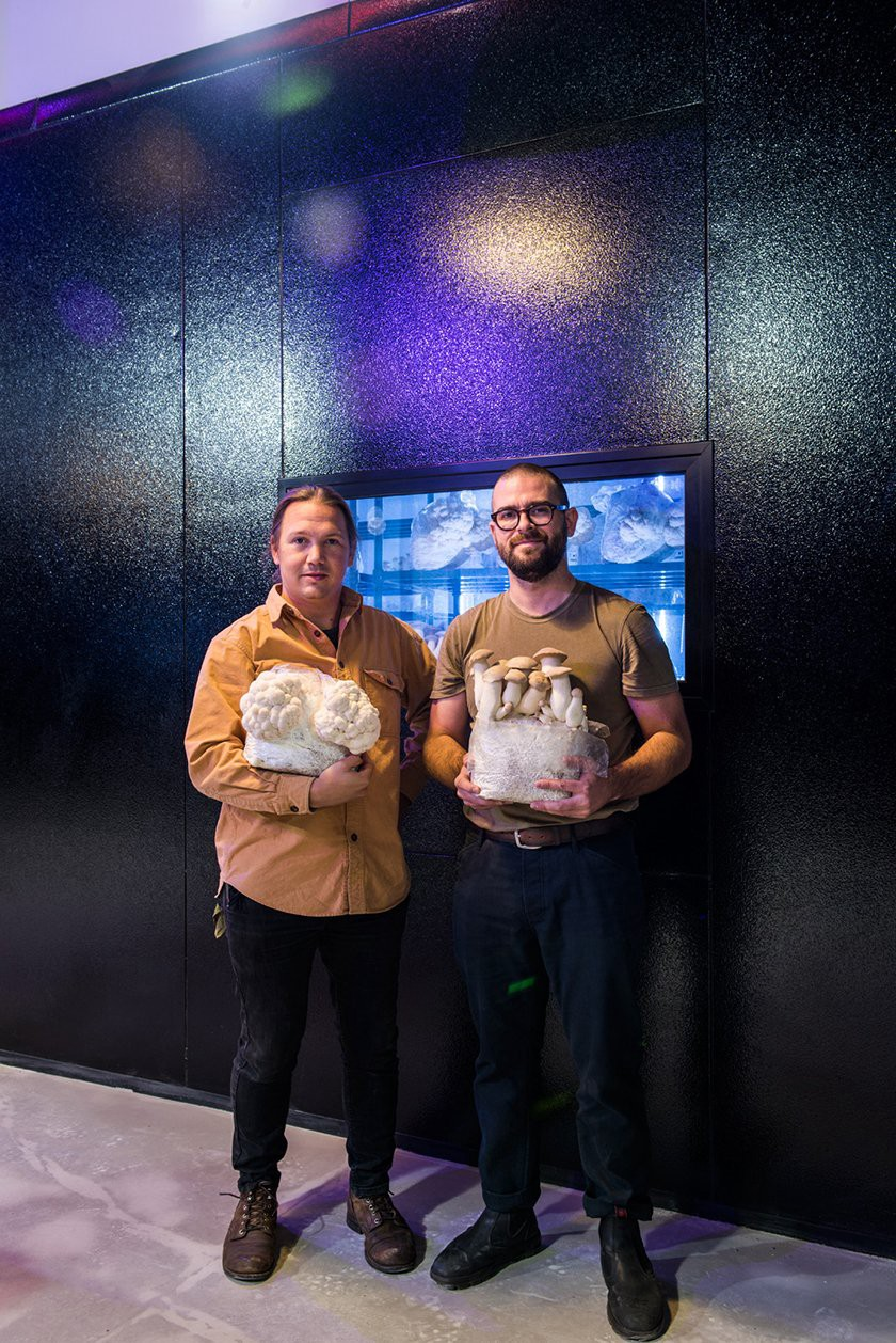 Adam DeMartino (left) and Andrew Carter (right) are the co-founders of Smallhold, here they are seen standing inside their Brooklyn Farm holding some of their mushrooms. (Photo: Valery Rizzo, Urban Farmers)
