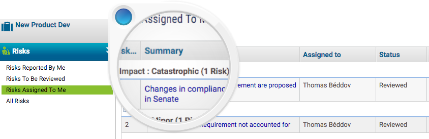 Number of Risks With Catastrophic Impact Assigned to Me - KPI for Project Team Member