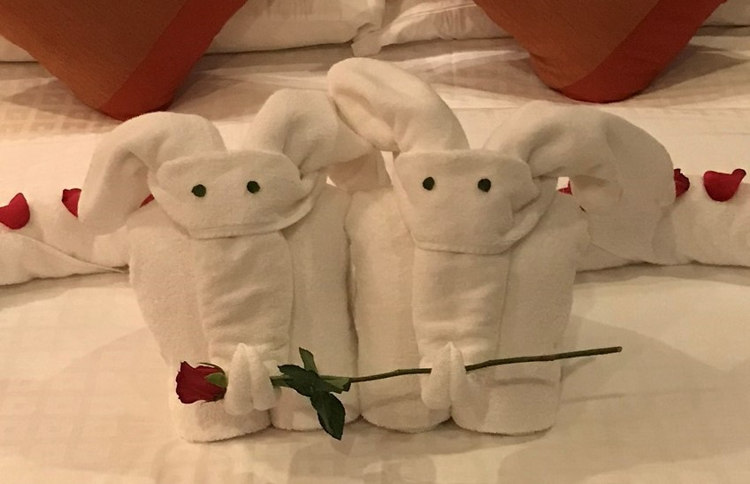 Towels shaped like elephants with a rose in their trunk