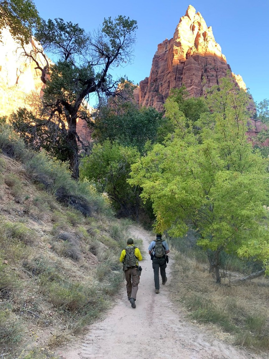 Searchers out in Zion National Park searching for Holly Courtier who vanished on October 6, 2020.