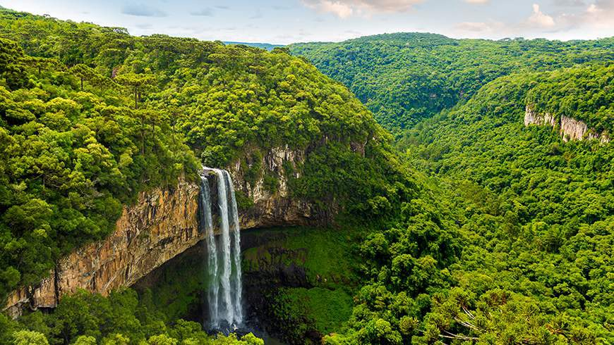Photo image of Amazon Rain Forest waterfall symbolizing patient data and healthcare technology