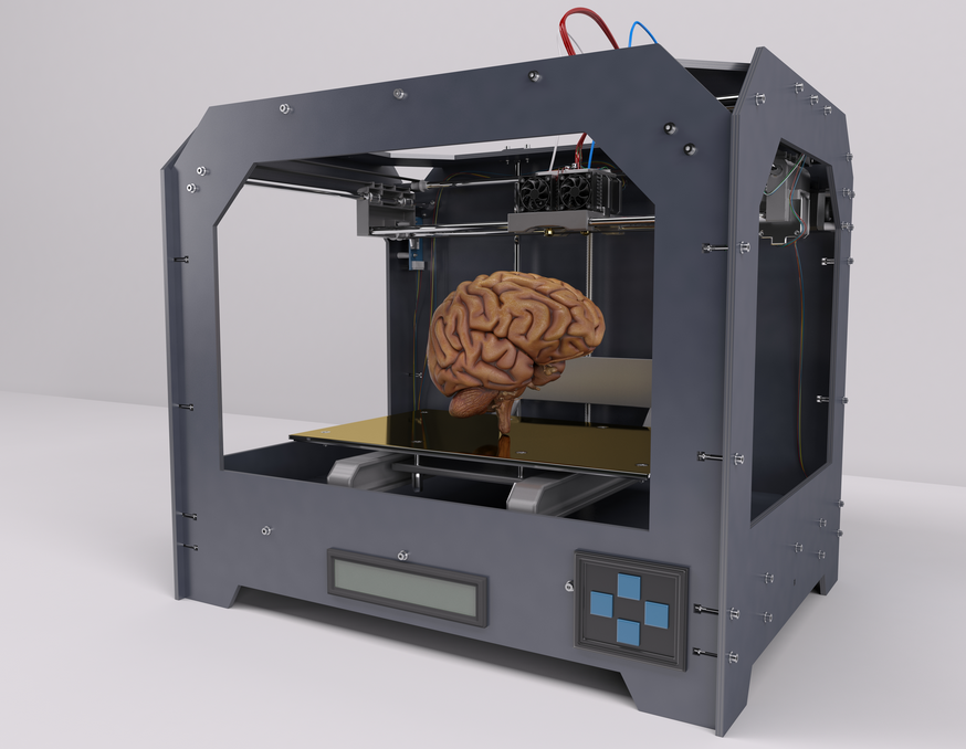 An image of a human brain in a 3D prototyping machine.
