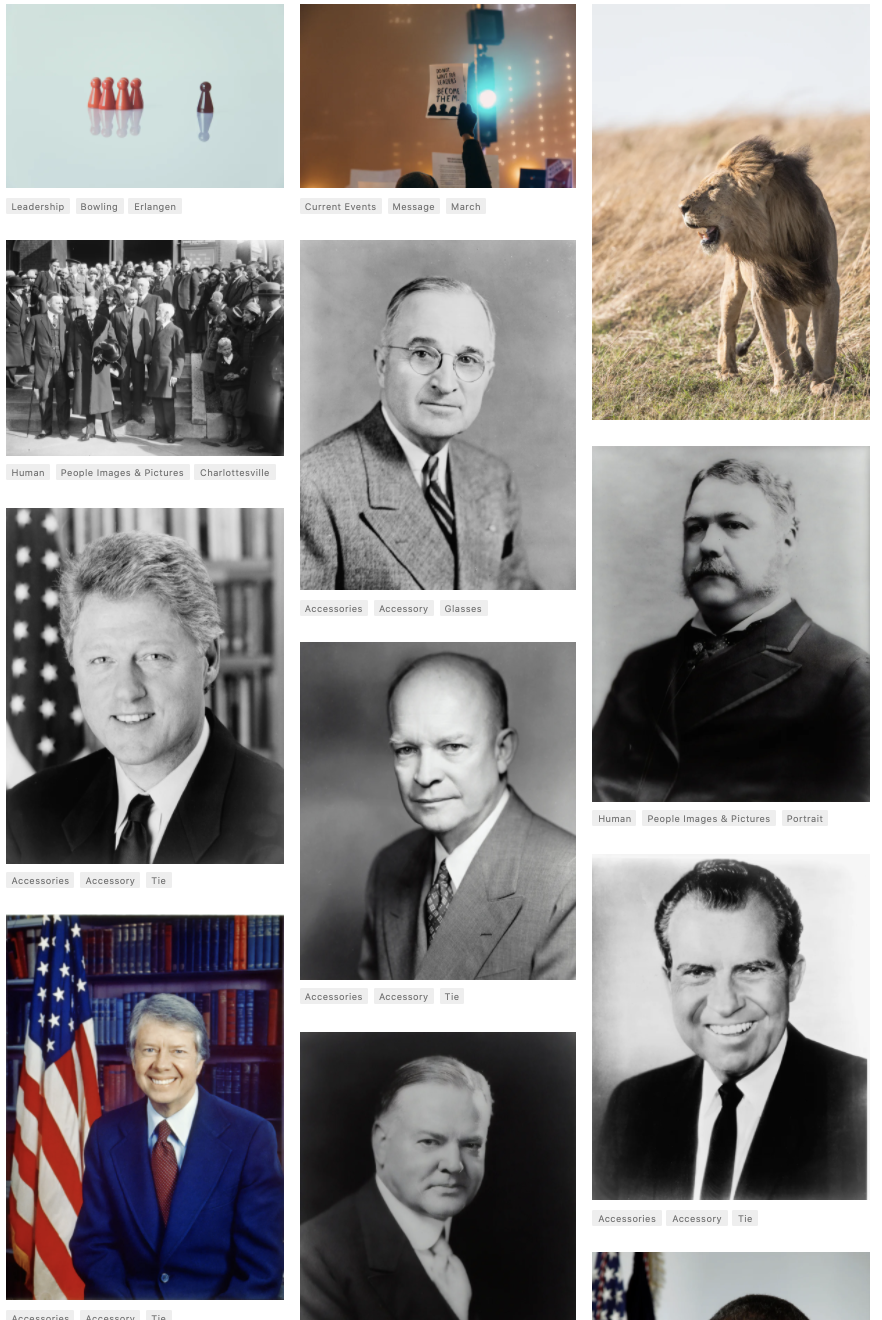 11 images from Unsplash. Of the 11, 8 of them are white men. The others are board game pieces, a protest sign, and a lion.