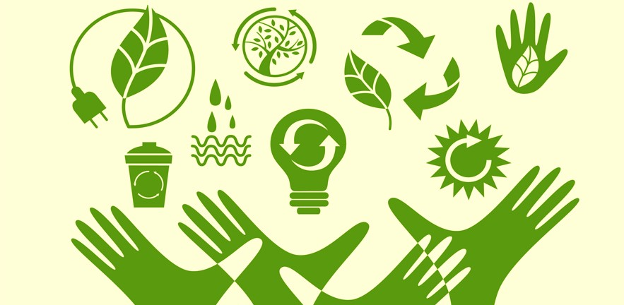 Businesses Find Environment Sustainability More Lucrative