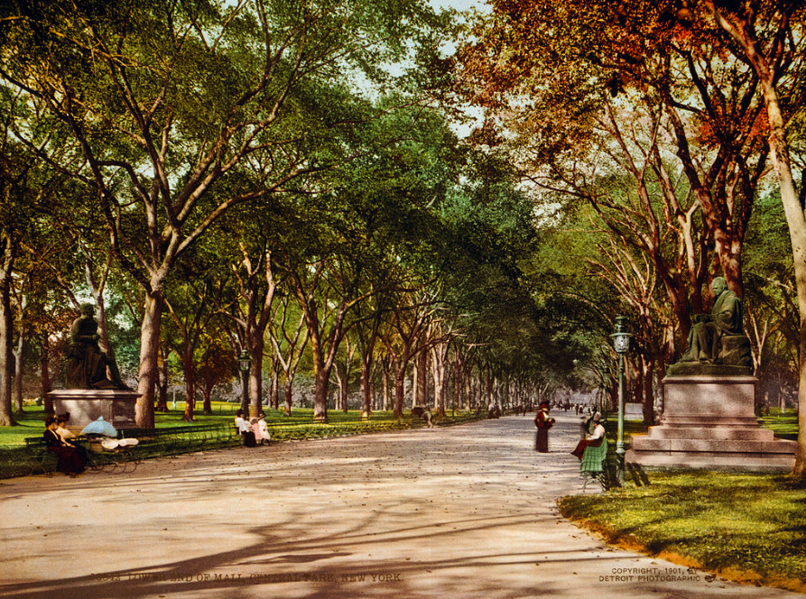 Colorized photo of Central Park's lower mall, 1901