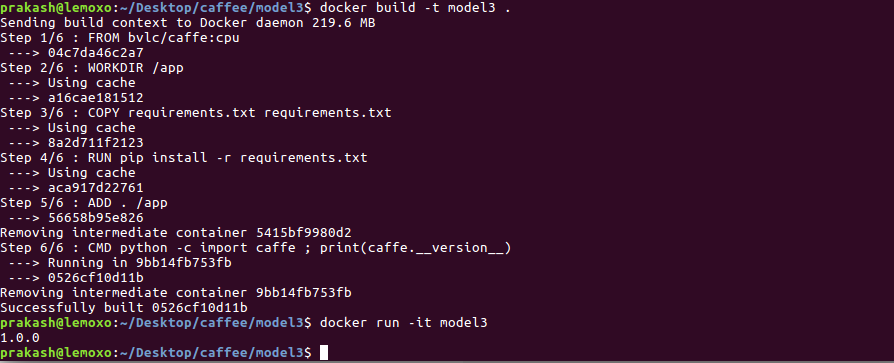 Playing with Caffe and Docker to build Deep Learning models