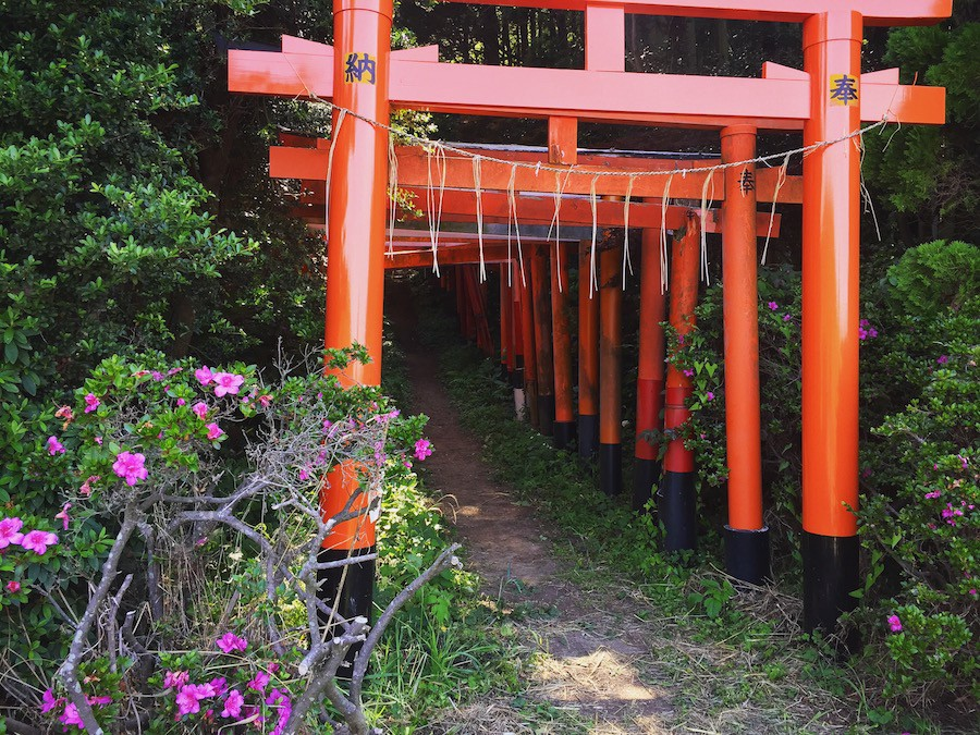 A Hidden Shrine Near Tokyo Spirited Away By The God Inari S Foxes By Donny Kimball A Different Side Of Japan