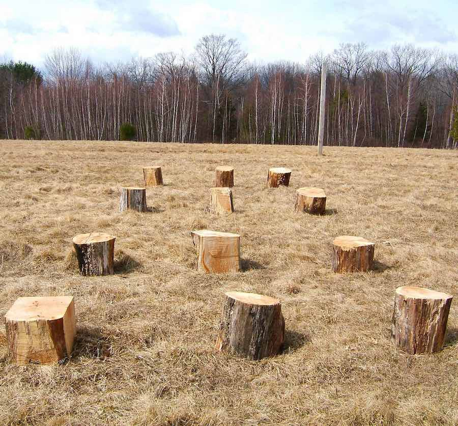 art made of a recycled landscape: a 3x4 grid defined by trunks of fallen trees