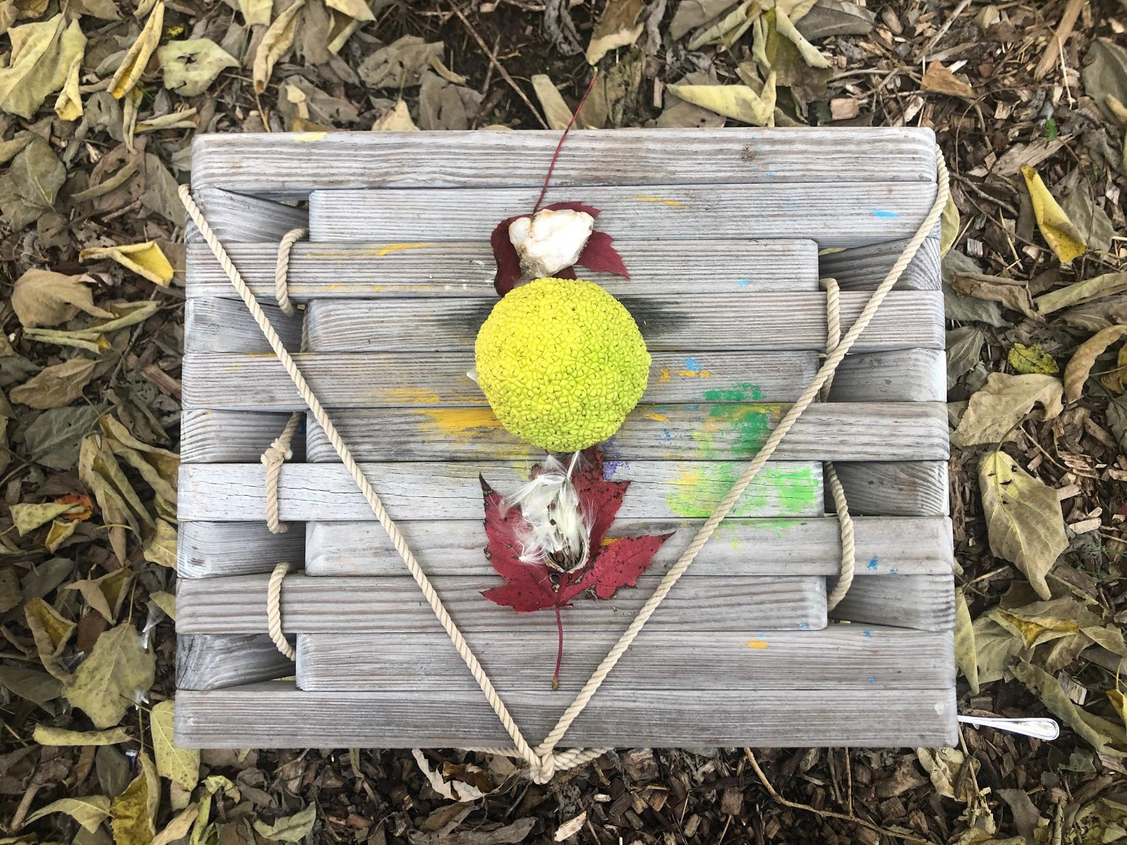 A photo of the finished found altar with an O'Sage orange, purple leaves, cotton pods, and tied rope on a wooden stand.