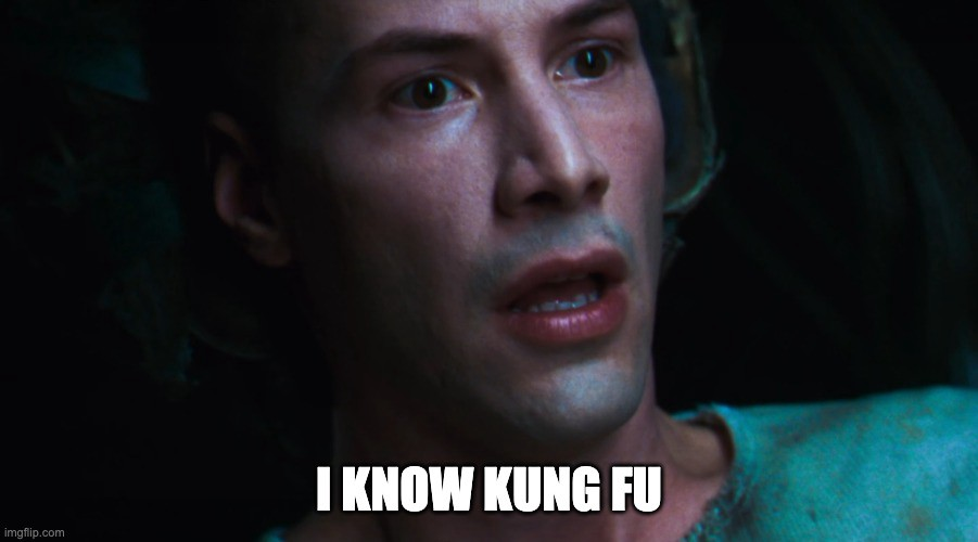 a meme of The Matrix scene in which Neo realises he knows Kung Fu