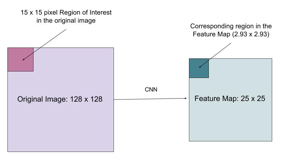 A Brief History of CNNs in Image Segmentation: From R-CNN to