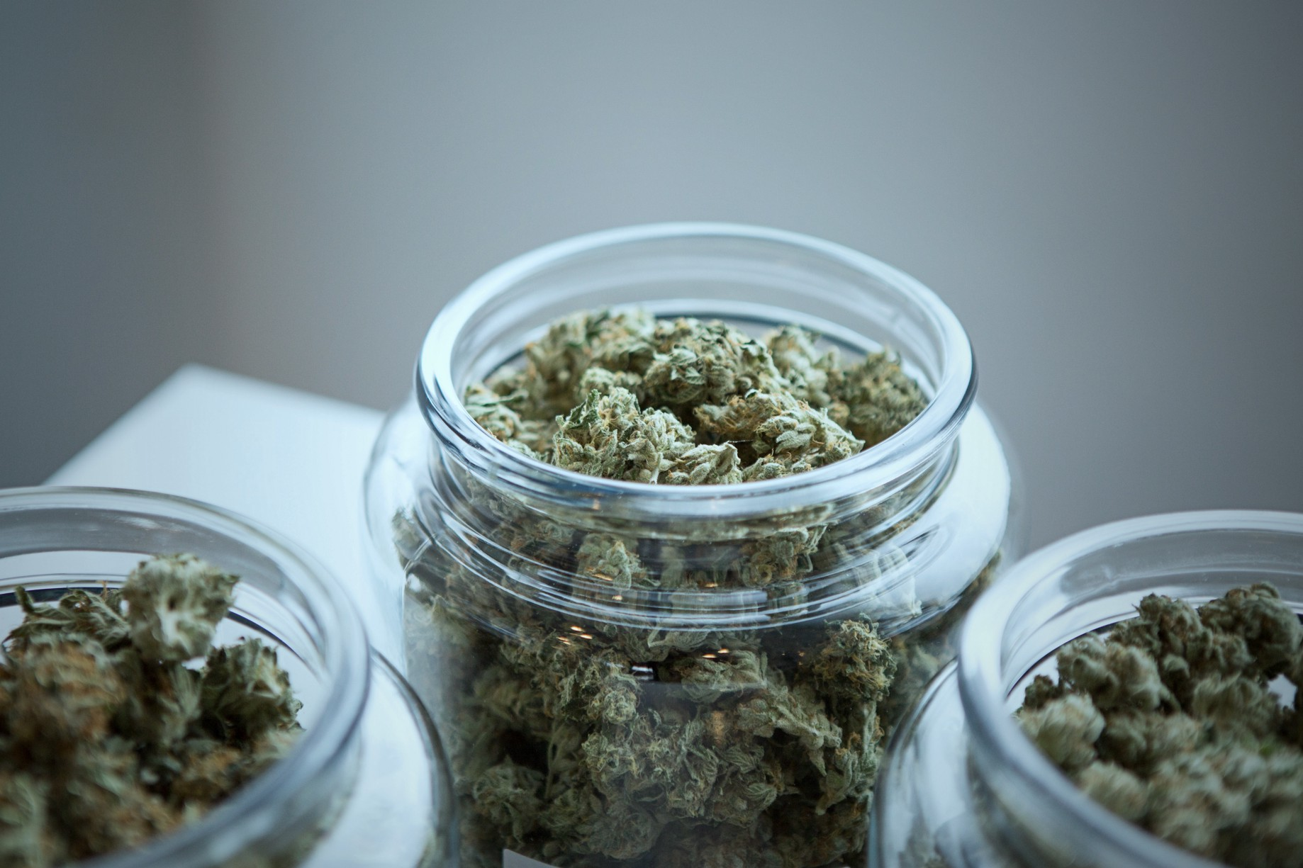 Do Different Strains of Marijuana Cause Different Highs?