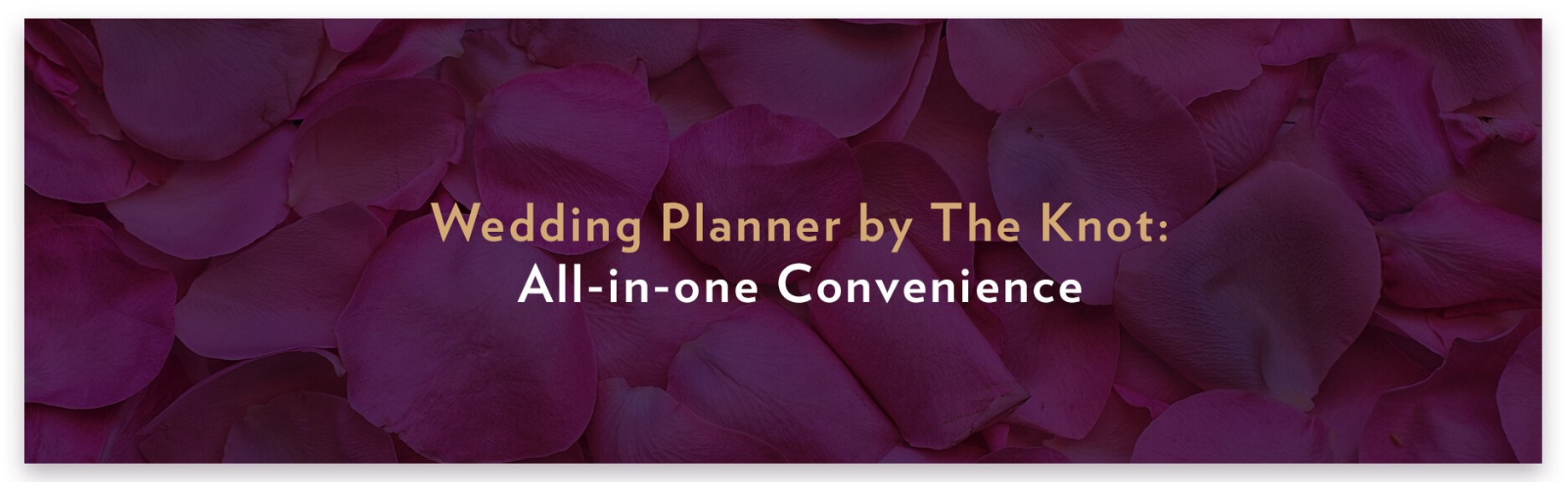 1542b8cd89a9 We hope our list helps you make your wedding-planning experience less  intimidating, less fundamentally exhausting, and more rewarding overall.