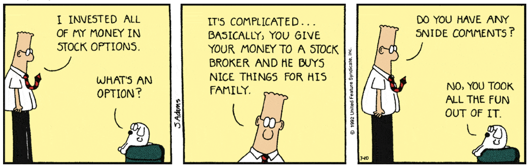 Image result for dilbert options