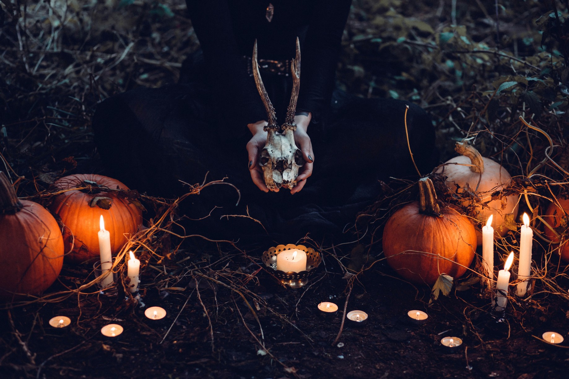 Witches are Taking Over Tumblr - Elica Starlust - Medium