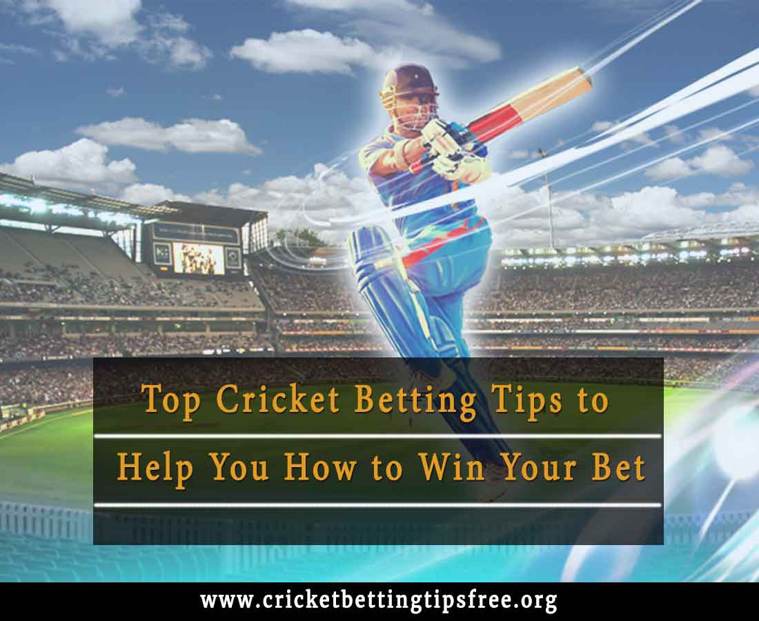Top Cricket Betting Tips to help you how to win your bet