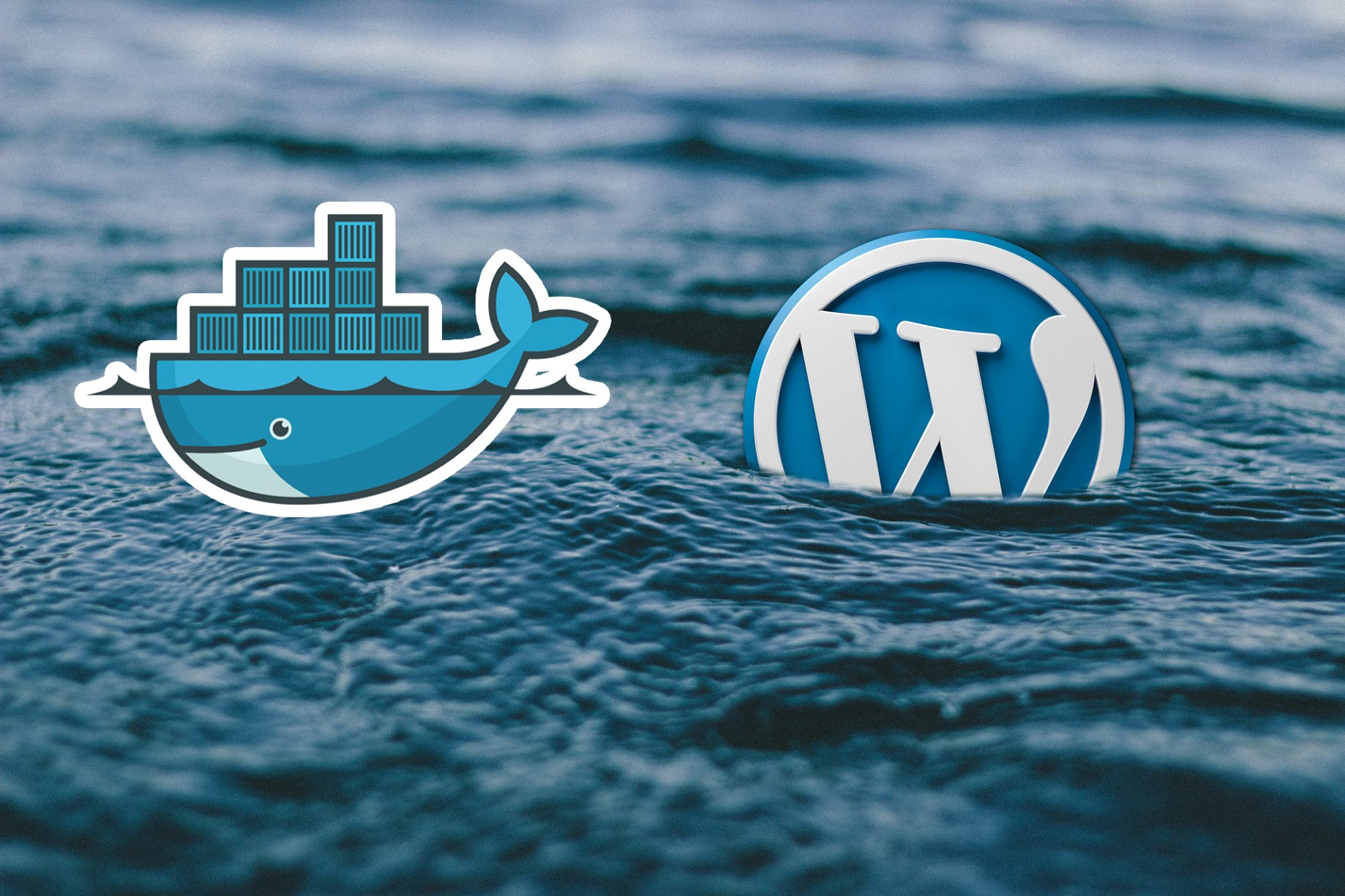 Setting up WordPress with Docker - Containerizers