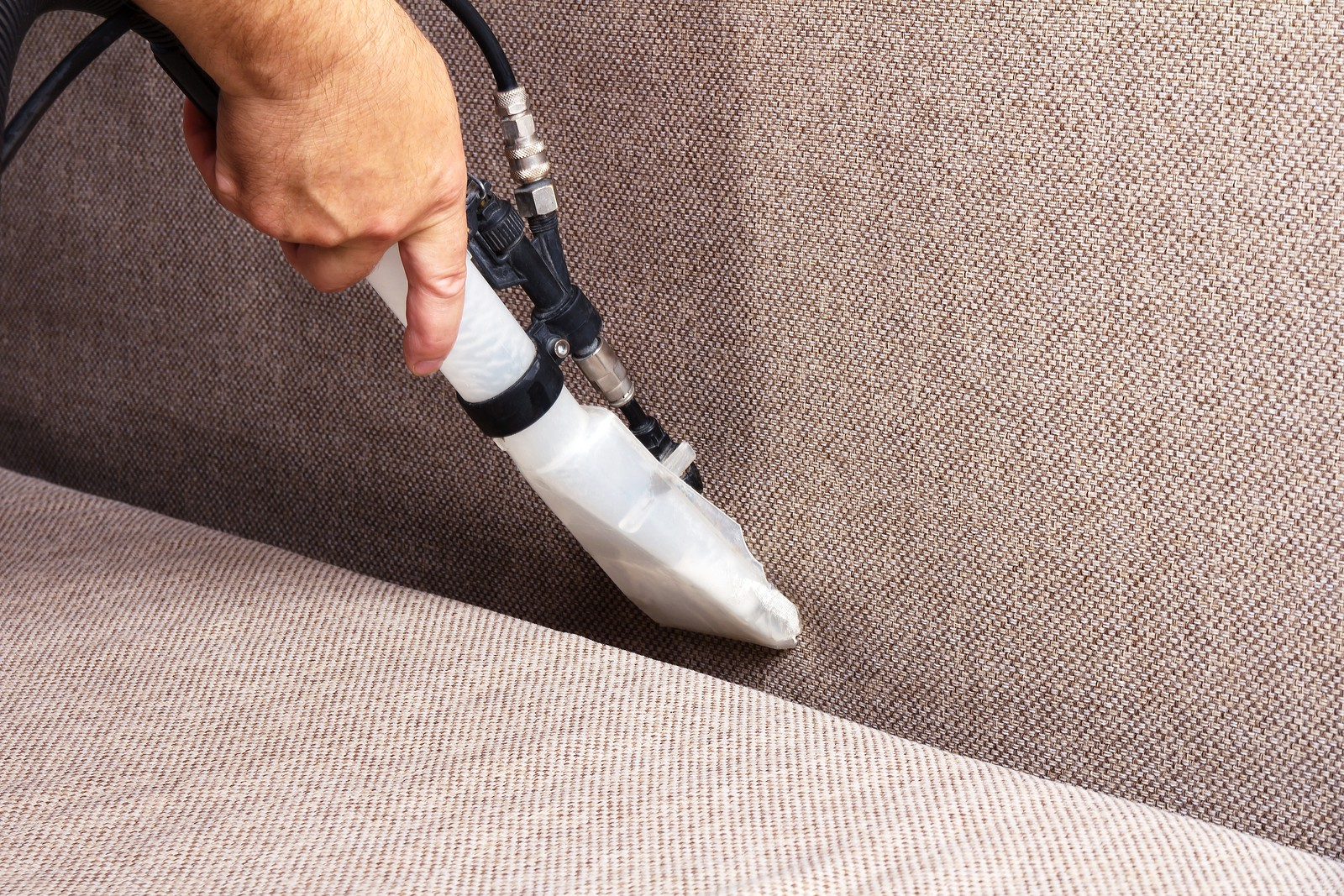 Professional Carpet Cleaning Services Do More than the Usual Vacuum   by  HeavensBestCleaningPros   Medium