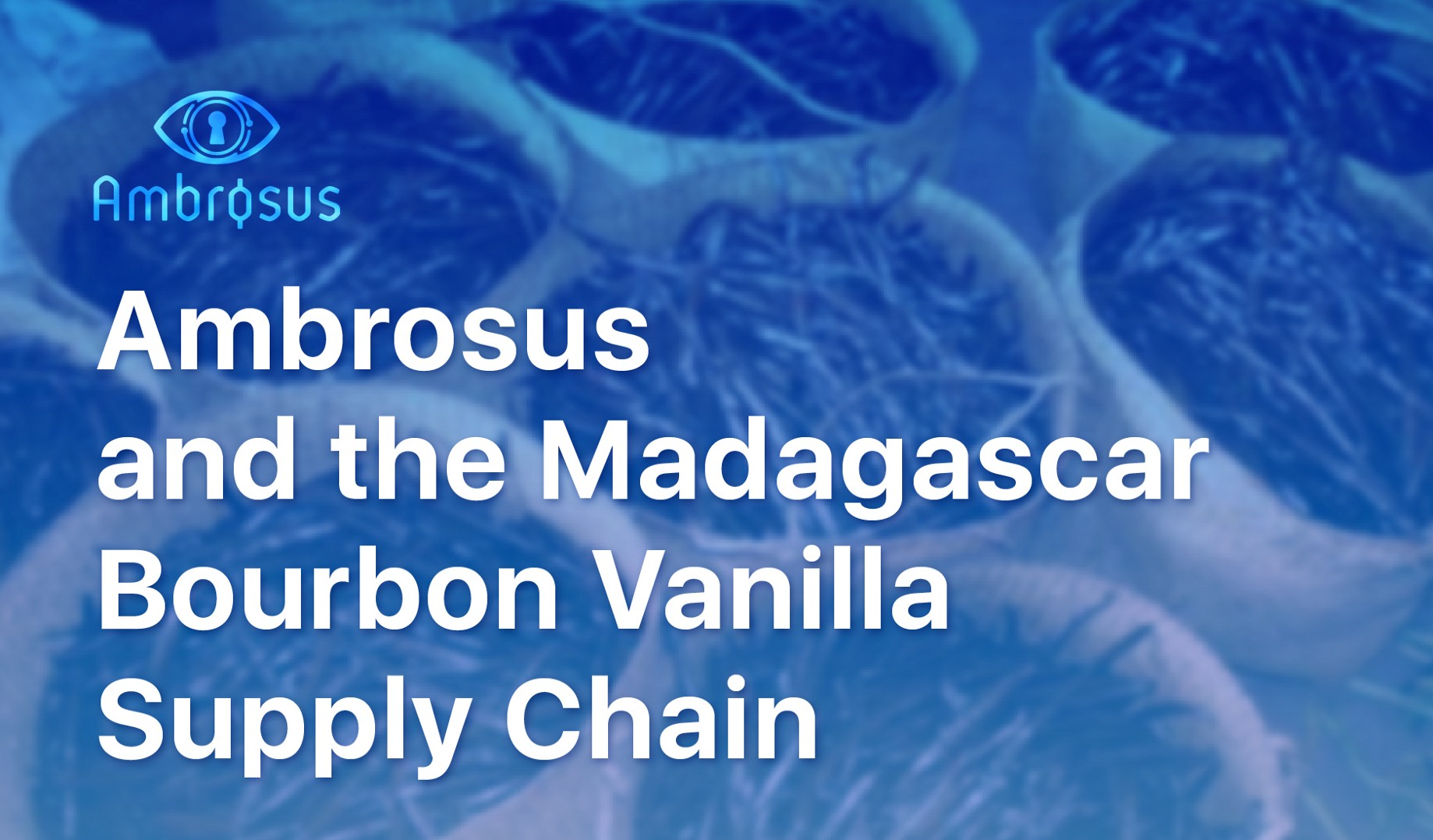In-Depth: the Madagascar Bourbon Vanilla Supply Chain on AMB-NET