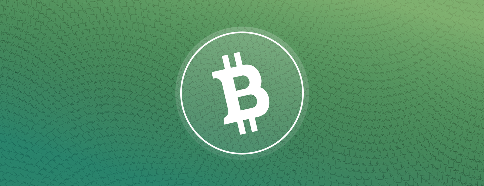 Buy, sell, send and receive Bitcoin Cash on Coinbase