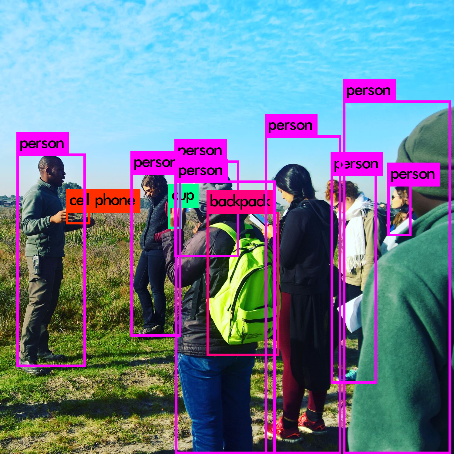 Real-Time Custom Object Detection using TensorFlow App