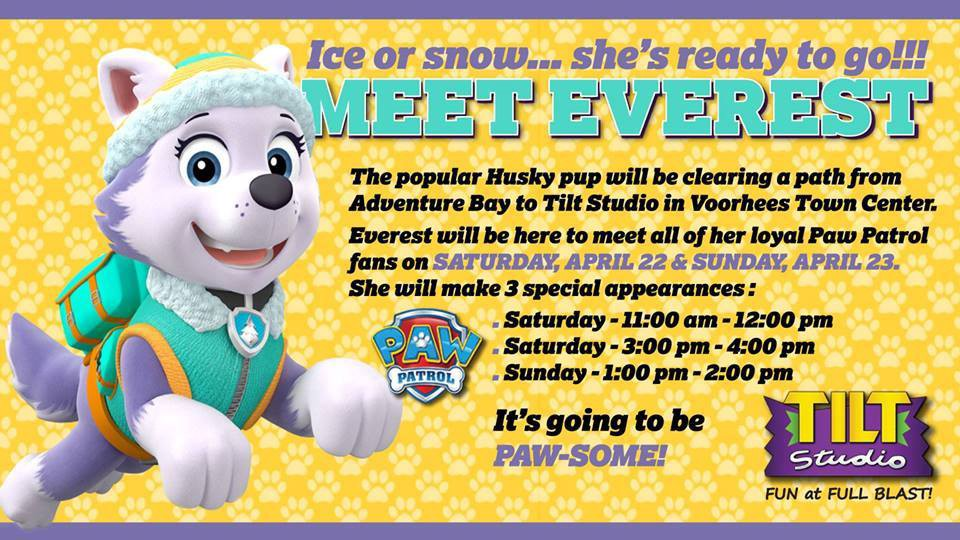 Meet Everest from Paw Patrol at Tilt Studio - The Voorhees Sun - Medium