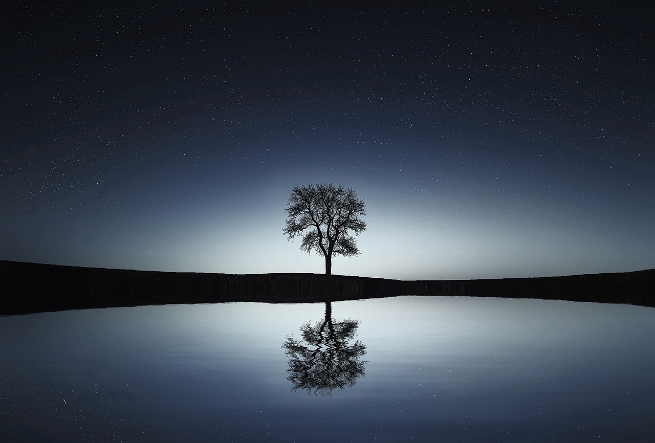 Image result for calm and serene