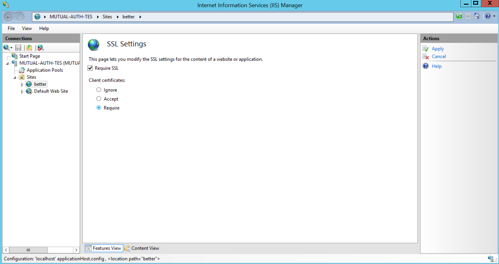 Configuring client certificates for mutual authentication on IIS 8