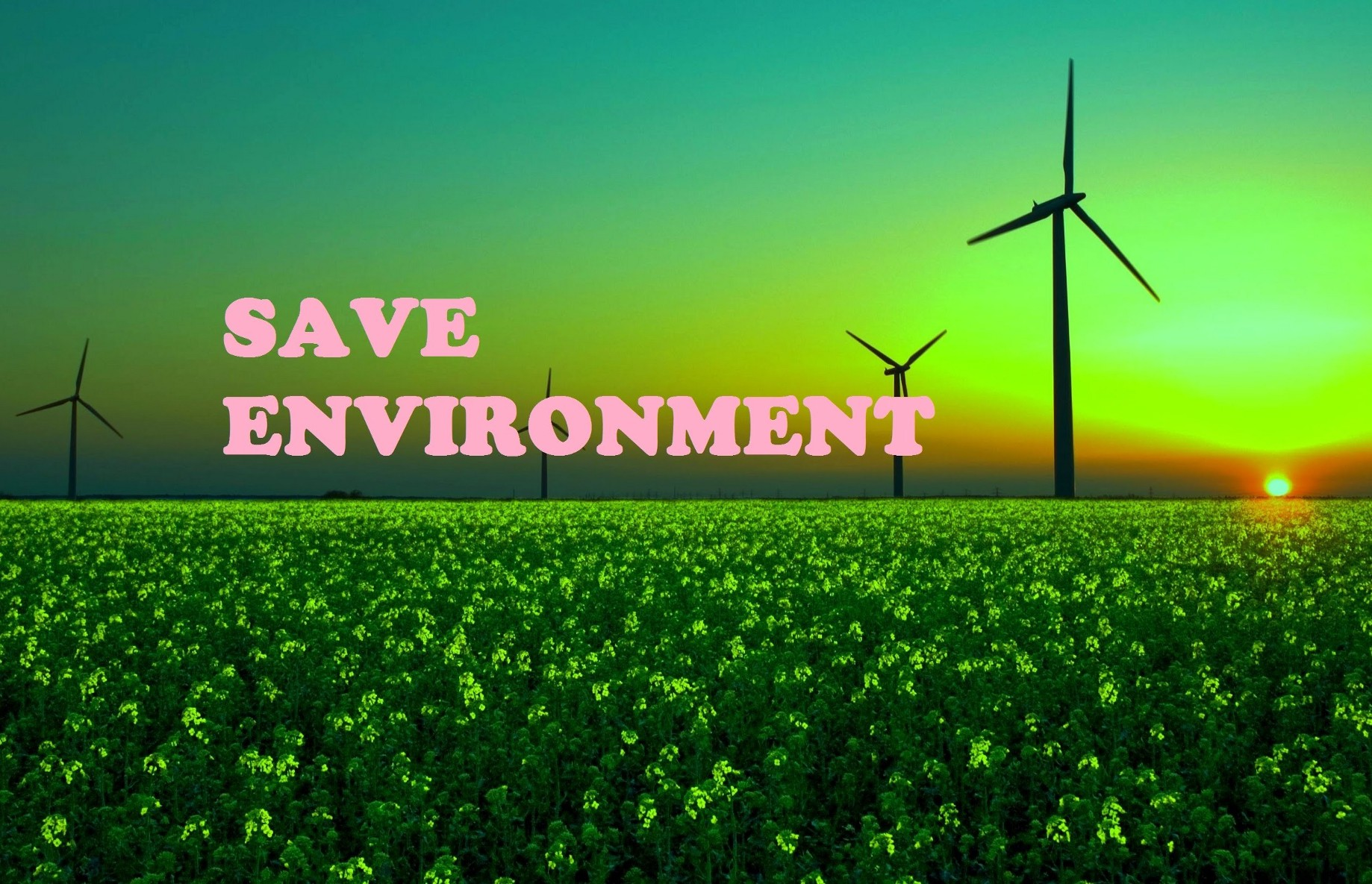 save environment essay   ganesh   medium save environment essay  saving the environment comes with education people  need to understand the importance of saving nature