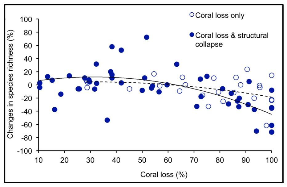 A global review of the relationship between coral loss (as a result of climate change) and biodiversity of coral reef fishes.