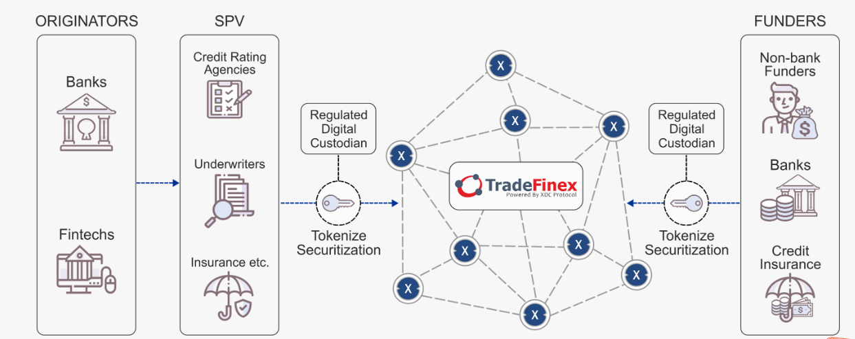 TradeFinex platform, a solution to Trade and Finance.