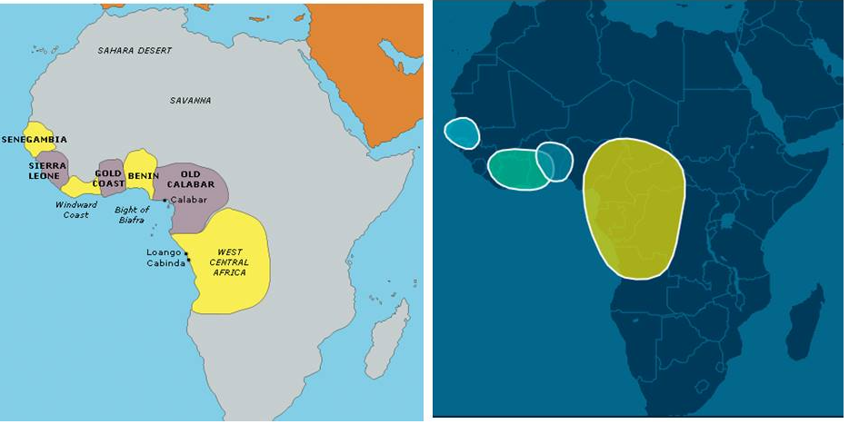 Tracing African Ancestry using DNA - Andre Kearns - Medium