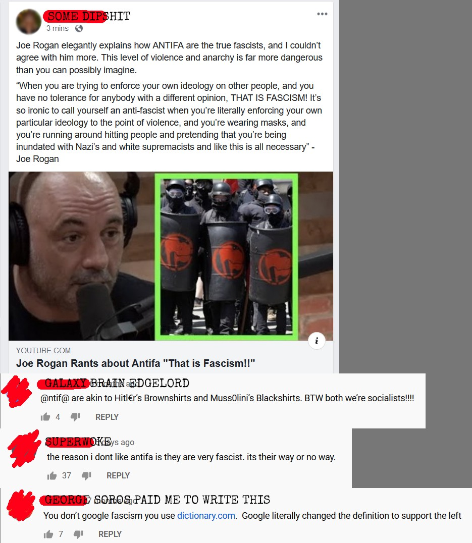 If you're reading this Soros removed the image. It is a small montage of comments spouting conspiracy theories about Antifa.