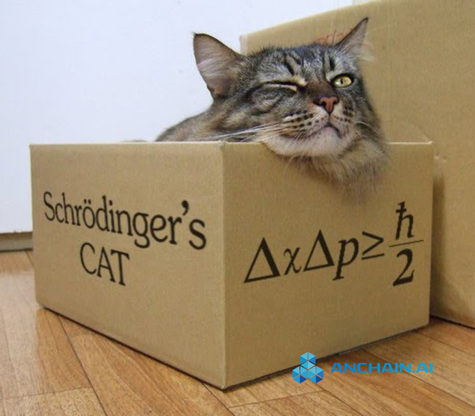 Figure 1: Schrodinger's cat in quantum mechanics