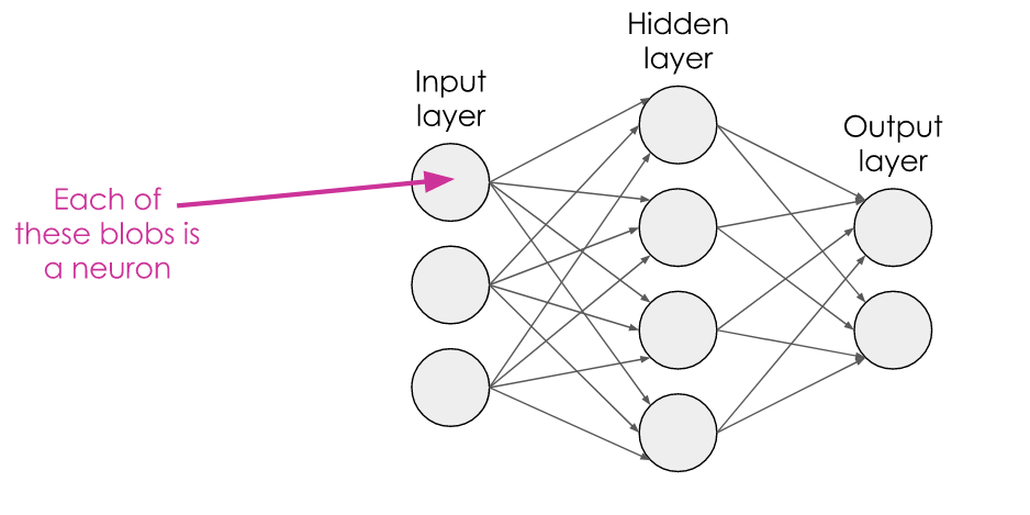 A 3-layer network, with circles representing each neuron, connected by arrows