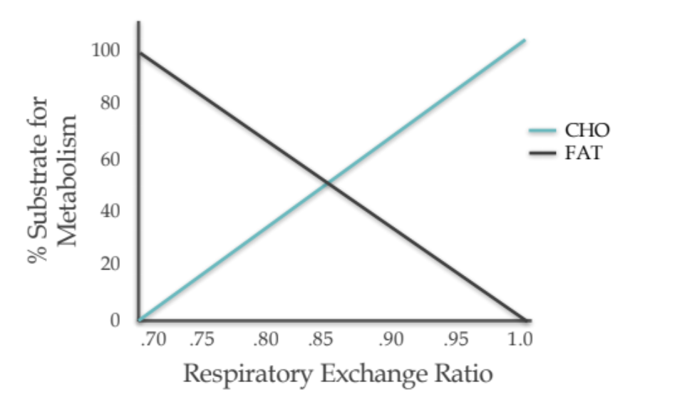 Rer Respiratory Exchange Ratio What Is It And Should You Care By Simon Mitchell Medium