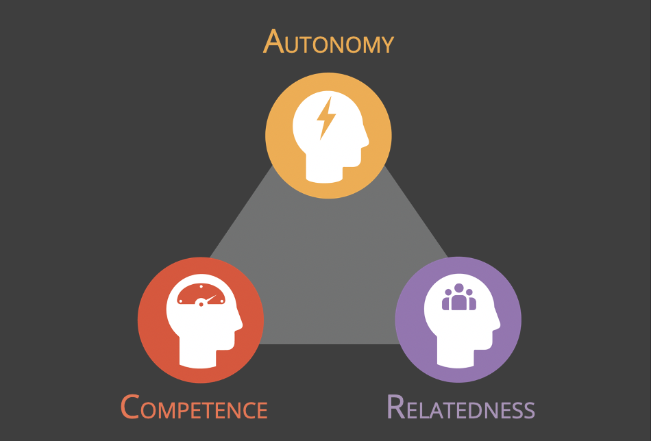 Self Determination Theory = Autonomy, Competence and Relatedness