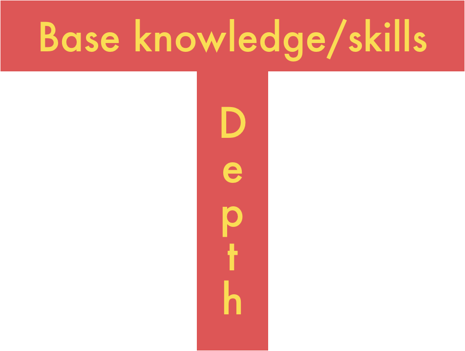 T-shape: The top of the T is your base knowledge and skills and the main part of the T is the depth of you knowledge