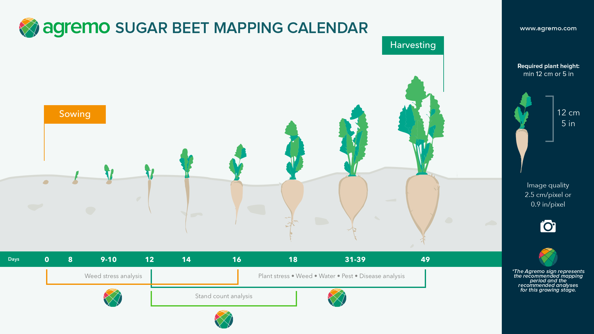 $18M reasons to fight the sugar beet diseases with drones