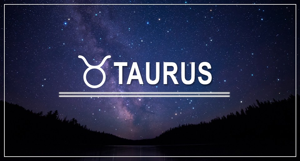 How to Handle a Taurus Man image