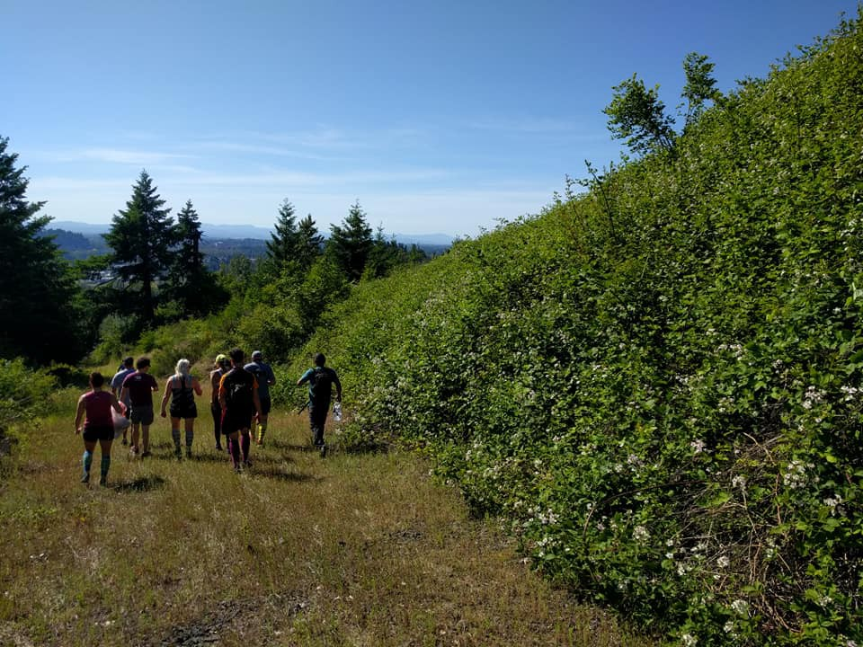 Runners in nature in Oregon