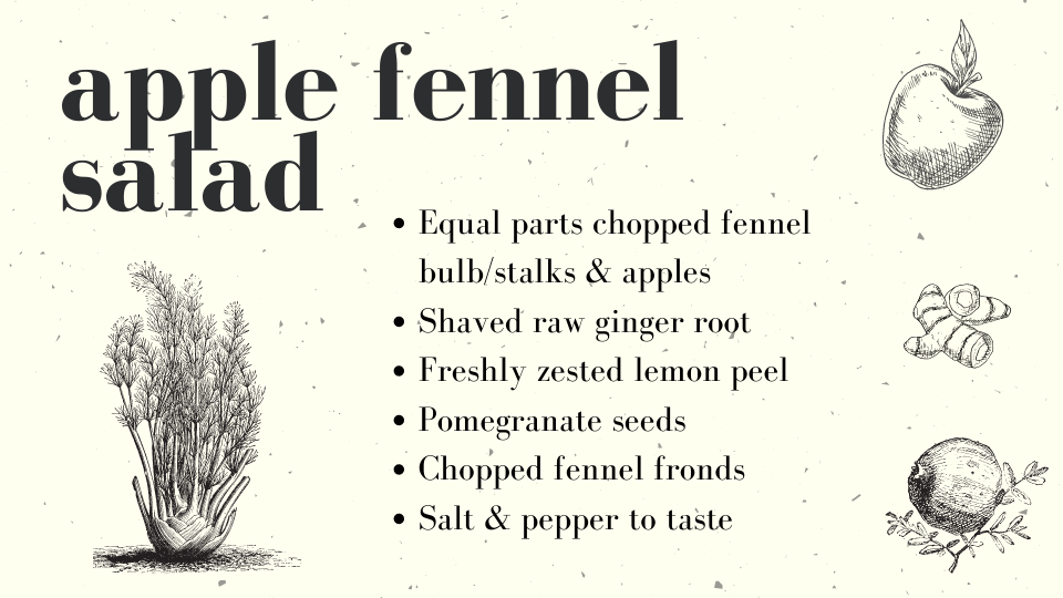 Apple Fennel salad recipe card, text is typed below this image in the article as well. Line illustrations depict ingredients.