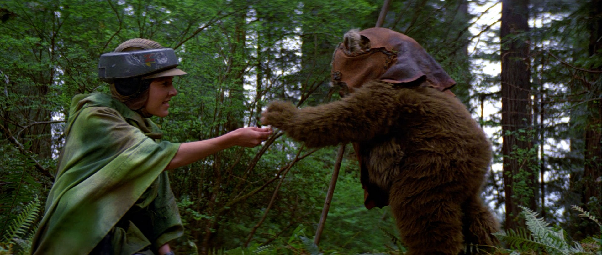 Image result for star wars leia and ewoks