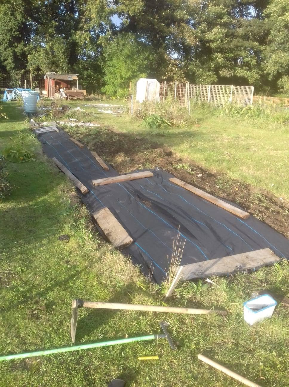 Picture of an allotment garden which needs a lot of work.