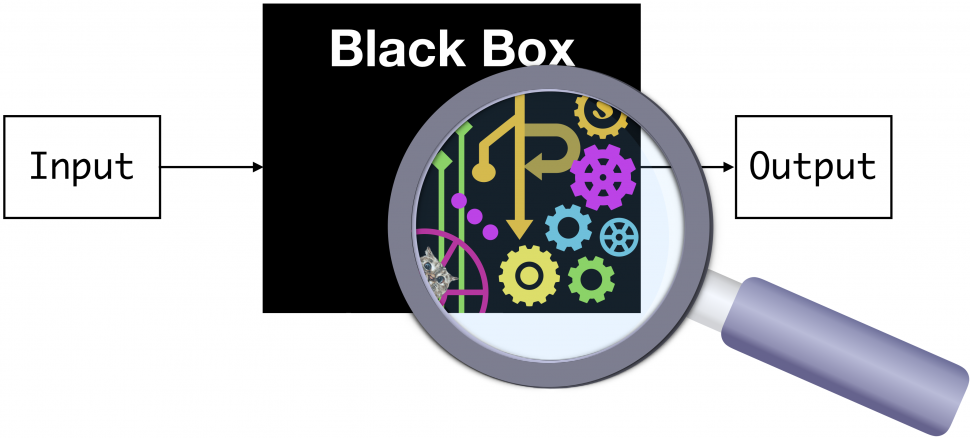 black box diagram, input — black box — output, with magnifying glass showing inner circuitry, implication that this is not fully understood
