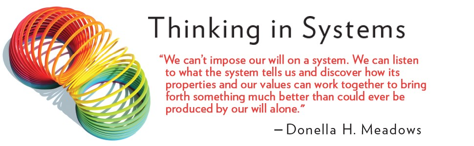 Promotional image for Thinking In Systems book