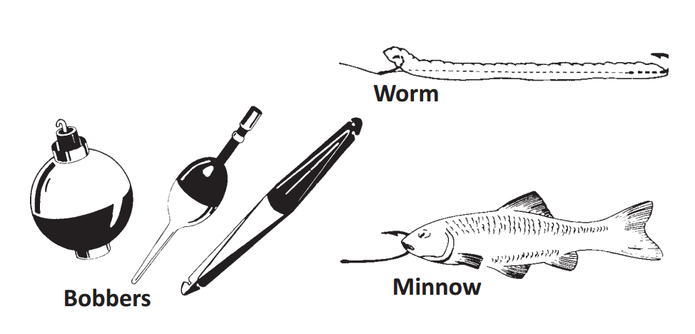 A Guide to Fishing for the First Time - U S  Fish & Wildlife