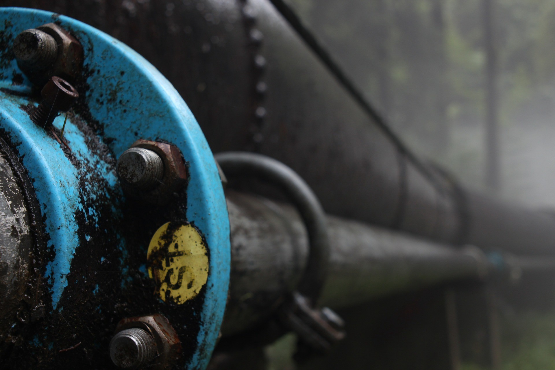 picture of a pipeline in a forest